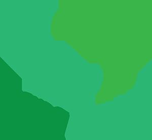 Sơn Long Việt Nam